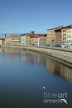 River Arno Pisa by John Edwards