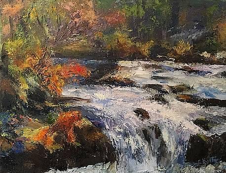 River Falls by Gail Kirtz