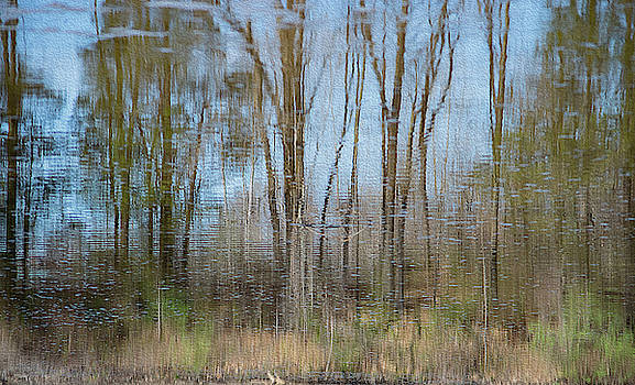 River Reflections by Andrea Swiedler