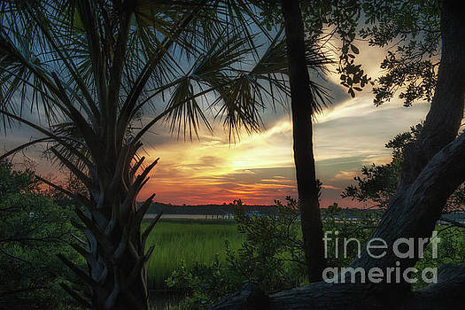 Rivertowne Southern Sunset Paradise by Dale Powell