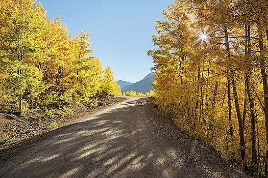 Road To Mountain Layers by Denise Bush