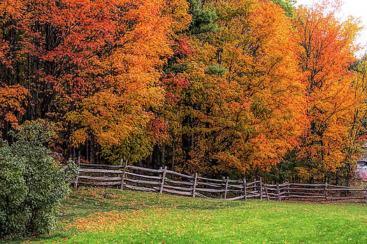 Roadside view of Vermont fall colors by Jeff Folger