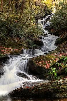 Roaring Fork Creek Falls III by Carol Montoya