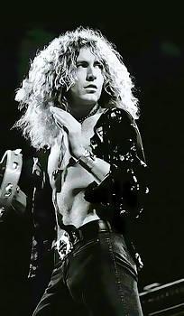 Robert Plant Playing Tambourine by Daniel Hagerman