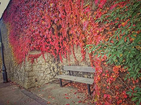 Rochester Castle Wall in Autumn by Zahra Majid