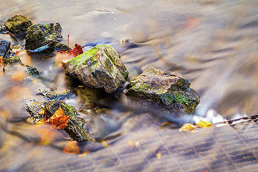 Rocks and Fall by Greg Booher