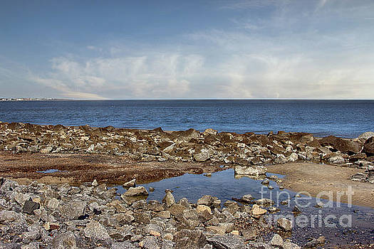 Rocks on Driftwood Beach by Tom Gari Gallery-Three-Photography