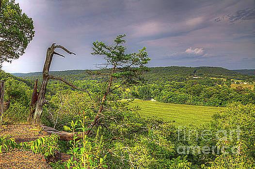 Larry Braun - Rockwood Trail Overlook