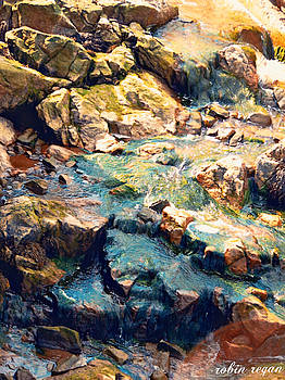 Rocky Brook by Robin Regan