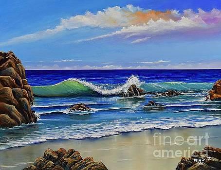 Rocky Coast by Mary Scott