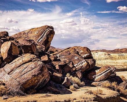 Rocky Fish By The Desert by Nazeem Sheik