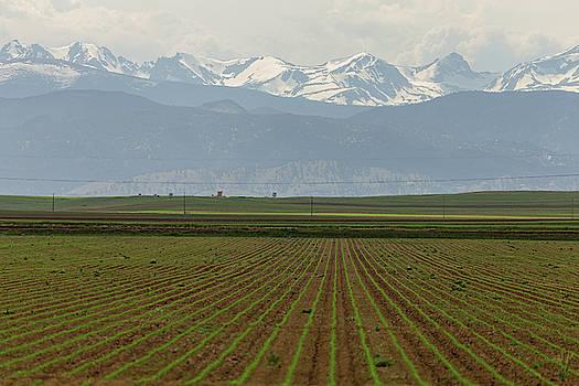Rocky Mountain Gravity by James BO Insogna