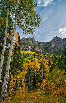 Rocky Mountain High by Tom Gresham