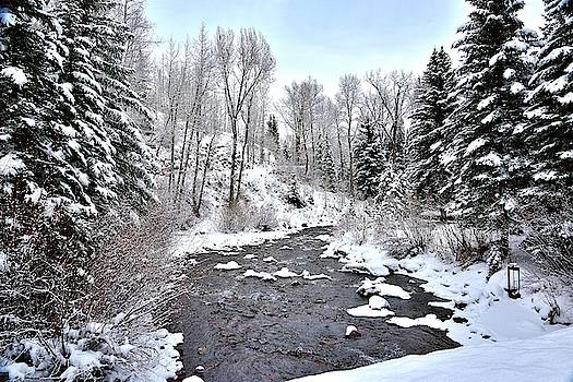 Rocky Mountain stream at Ouray, Colorado by Gerald Blaine