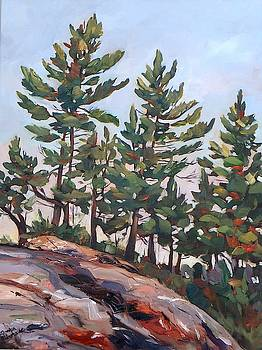 Rocky Pines by Monica Ironside