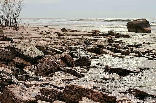 Rocky Waterfront by Iris Russak