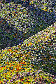 Rolling Hillsides in California - Vertical by Glenn McCarthy Art and Photography