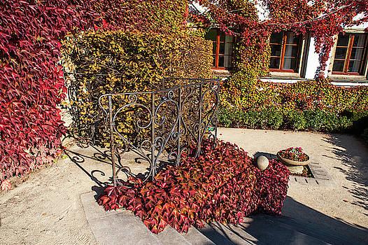 Jenny Rainbow - Romantic Corner in Vrtba Garden 1