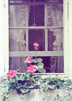 Romantic Window 300 by Sharon Williams Eng