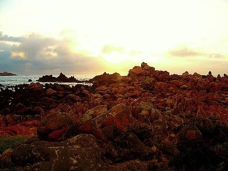 Rooi Els Beach II by Ica Pavon