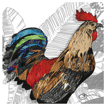 Rooster on Big Island by Lucas Boyd