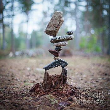 Rootzen by Pontus Jansson