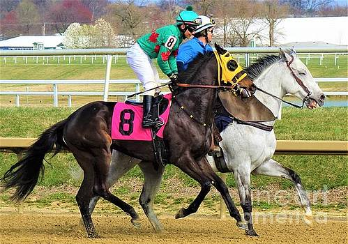 Rosario Montanez - Glorious Weekend - Laurel Park by Anthony Schafer