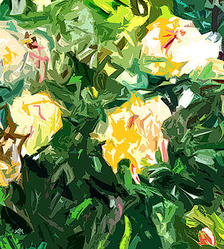 Linda Mears - Rose Fantasy One