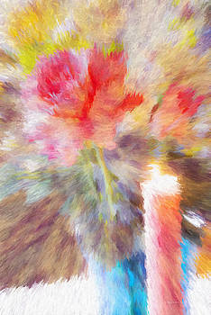 Rose Glow Burst One by Diane Lindon Coy