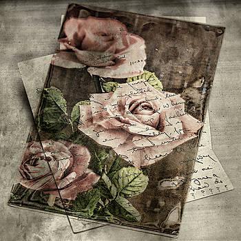 Sharon Popek - Rose Love Letters