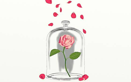 Rose petals by Ronni Dewey