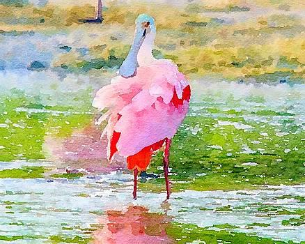 Roseate Spoonbill Watercolor by Susan Rydberg
