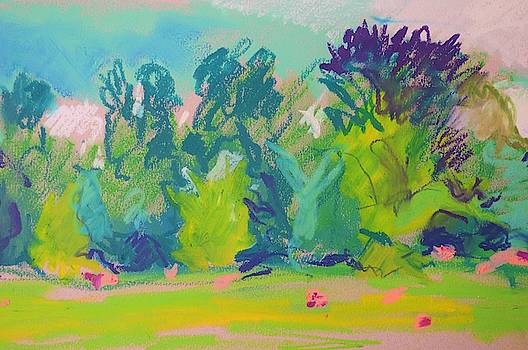 Rosemarsh by Aletha Kuschan