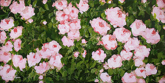 Roses by Melissa Lyons