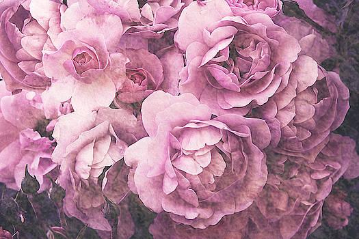 Rosy Nostalgia by Vanessa Thomas