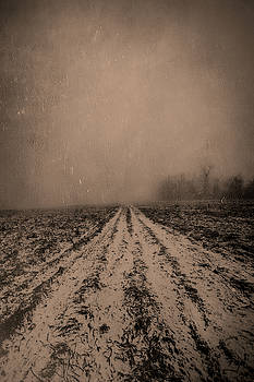 Rough Road Ahead by Andrea Swiedler
