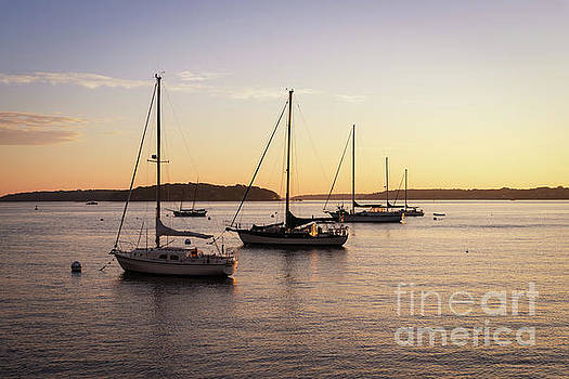 Row Of Sailboats  by Michael Ver Sprill