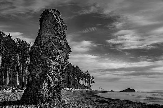 Mike Penney - Ruby Beach 223