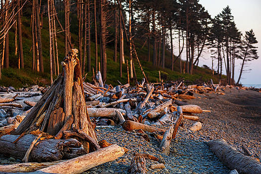 Mike Penney - Ruby Beach Sunset 14