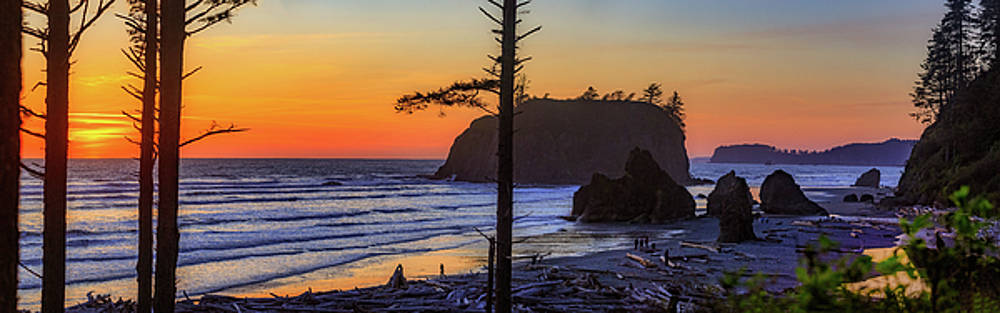 Mike Penney - Ruby Beach Sunset 16