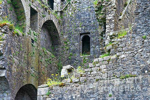 Bob Phillips - Ruins at Rock of Cashel One