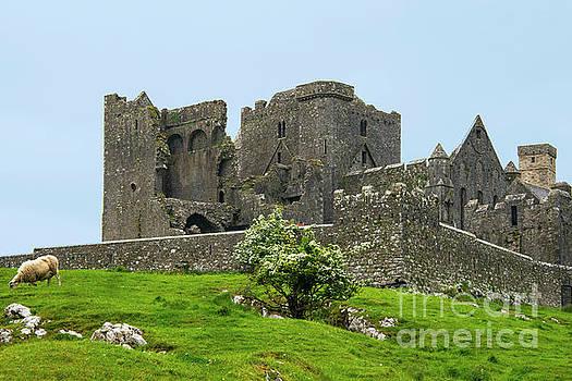 Bob Phillips - Ruins at Rock of Cashel Four