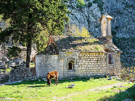 Ruins of the Church by Rae Tucker