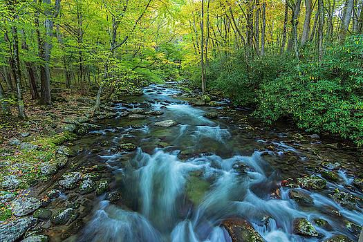 Run River Run by Peg Runyan