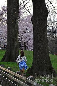 Running Free - Central Park in Spring by Miriam Danar
