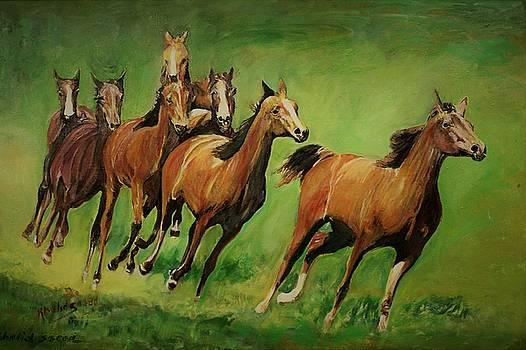Running wild by Khalid Saeed