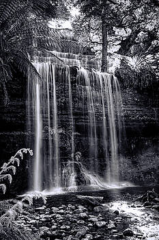 Tony Crehan - Russell Falls - Mount Field National Park - Tasmania - Australia