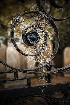 Rusted Cemetery Gate with Spanish Moss by Melissa Bittinger