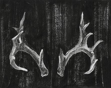 Rustic Antlers I Wall Art by Ethan Harper