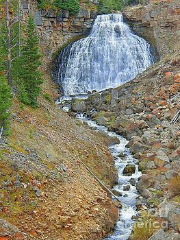 Rustic Falls Yellowstone National Park by Art Sandi